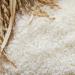 【やめろ】変な味と匂いのする米ってどうやったら食える?