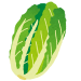白菜とかいう鍋物で傘増しする為だけの野菜wwwwww