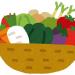 自炊したいんだけど必要な栄養が取れる野菜を教えてくれ